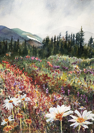 Annie Thayer, Caribou Wildflowers